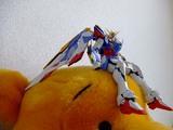 Wing_verka10
